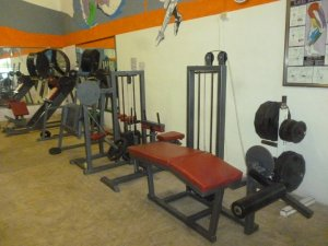 Gimnasio completo varios aparatos gym profesional for Aparatos de gimnasio usados